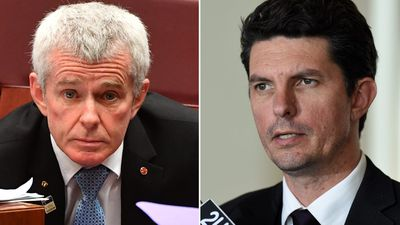 Malcolm Roberts and Scott Ludlam 'ineligible to run for parliament'