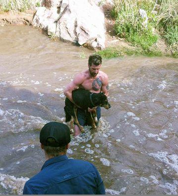 A Good Samaritan leaped into the creek to save Sara Melnicoff's  13-year-old senile and arthritic dog. (Facebook/Sara Melnicoff)