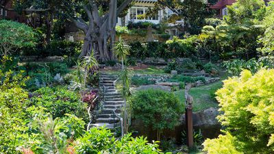 Sydney's spectacular secret gardens to enjoy this spring