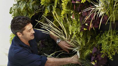 Australia's favourite gardener Jamie Durie share's his top five garden tips for spring