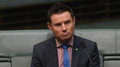 Liberal MP Andrew Laming. (AAP)