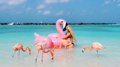 Caribbean Island brings flamingo selfie trend to life