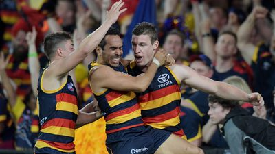 Adelaide Crows belt Geelong Cats in AFL preliminary final