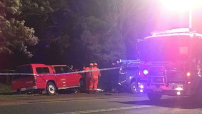 Man killed while changing tyre on Goulburn Valley Highway