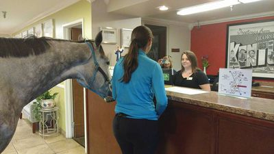 PHOTOS: Equine trainer checks into Kentucky motel with her horse
