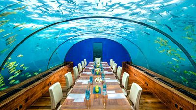 The world's first underwater restaurant has opened