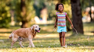 Dogs proved to be the best stress relief for children (All dog lovers: 'Well, der')