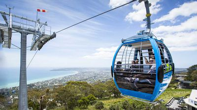 Cloud cruising and tree-surfing topped off with wine: How to spend a day on the Mornington Peninsula