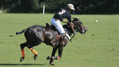 How to train like a professional polo player