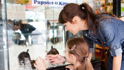 The best first pet for your kids - and it's not a puppy
