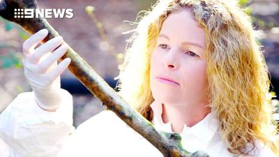 60 Minutes: Inside the mysterious Australian body farm