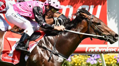 Flying Artie could back up in G1 Darley
