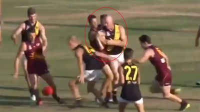Former AFL star Barry Hall throws wild punches in grand final