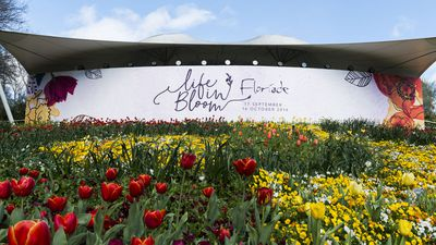 Spring has sprung: The best snaps from Floriade 2016