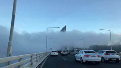 Fog and bus strike create perfect storm for Brisbane commuters