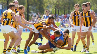 North beat Hawks in AFL return to Arden St