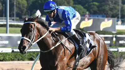 Winx opens $1.10 for group 1 Chipping Norton Stakes