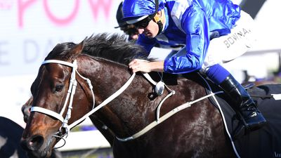 Champion mare Winx climbs off canvas in winning return