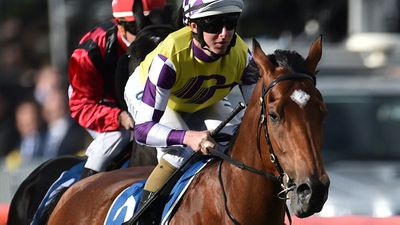 Raffles has high hopes for Sacred Elixir