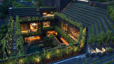 Eco-warrior: City home boasts sensational stepped roof garden