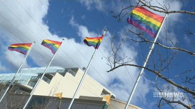 Criticism after 'yes' same-sex marriage campaign uses taxpayer money