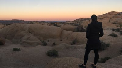 The Joshua Tree: This is the best camping experience in the world