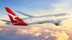 Qantas's new Dreamliner aircraft. (Qantas/Supplied)