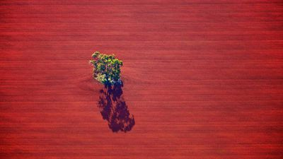 Photographer's aerial snaps capture rural Australia as you've never seen it before