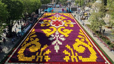 Spectacular 'tulip carpet' goes on display in Turkey