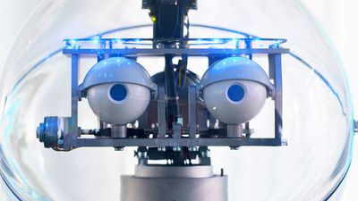 Facebooks artificial intelligence robots shut down after