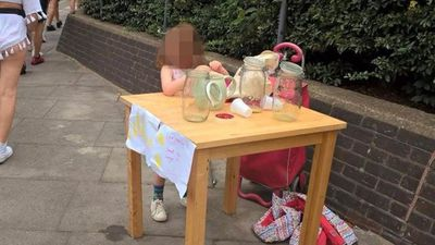 Five-year-old girl brought to tears and fined $250 for lemonade stall