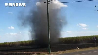 Dust devil crosses road in front of stunned family