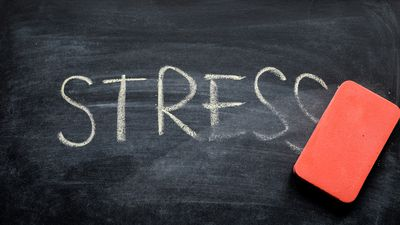 How to use stress to your advantage