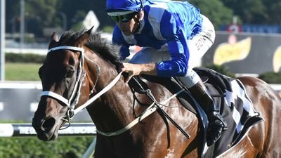 Winx climbs off canvas in winning return