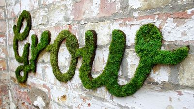 Garden Graffiti is Pinterest's new obsession