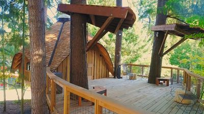 Forget free food and pingpong tables – Microsoft now provides treehouses for employees