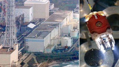 Robot finds possible melted fuel inside Fukushima nuclear reactor