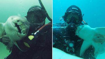 Rick's Dive School proprietor Rick Anderson with his Port Jackson shark friend. (Rick Anderson)
