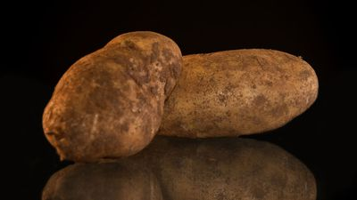 Know your potatoes - a guide to what to cook with which variety