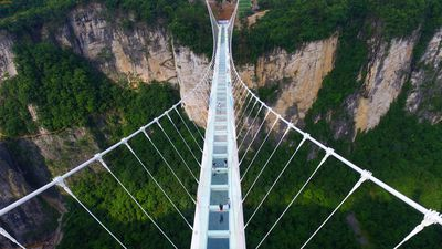 China's 430m glass-bottom bridge to reopen in Zhangjiajie national park today