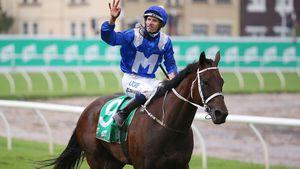 Winx makes it 16 in a row