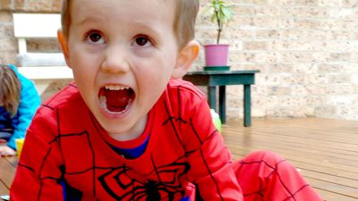 William Tyrrell was in foster care when he vanished