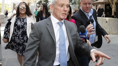 Court rules One Nation senator British