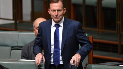 Abbott left with 'swollen lip' after headbutt from 'Yes' campaigner