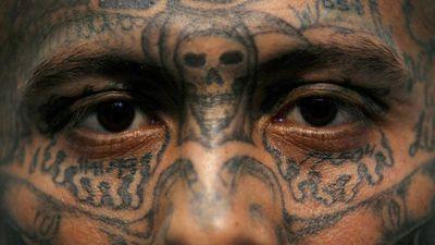 US immigration to target teen gang members