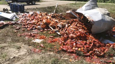Bourbon, pizza now pasta sauce spilled on Arkansas roads