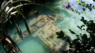 Tourist discovers WWII plane crash site in tropical riverbed