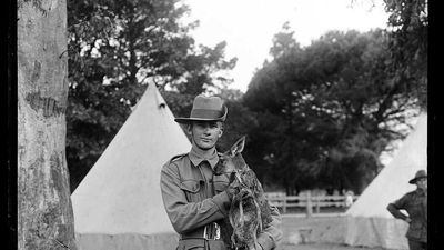 Solider poses for official military portrait with kangaroo
