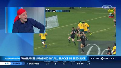 Bledisloe Cup: Peter FitzSimons says bright days may be ahead for the Wallabies