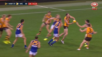 Hawthorn Hawks belt West Coast Eagles at MCG to break AFL season drought